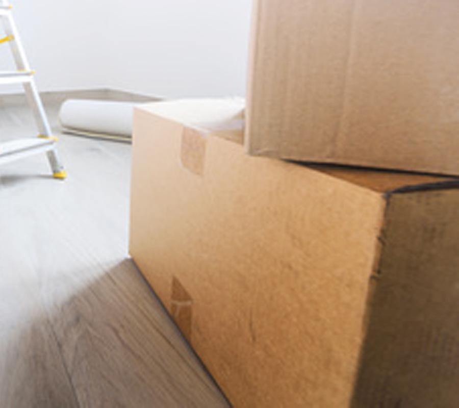 Scintilla_sito pll_box_traslochi
